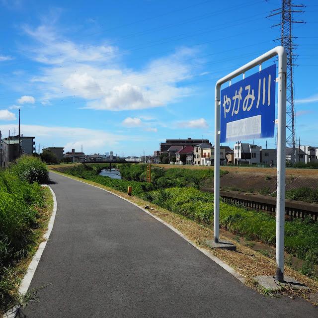 渋川 矢上川 合流