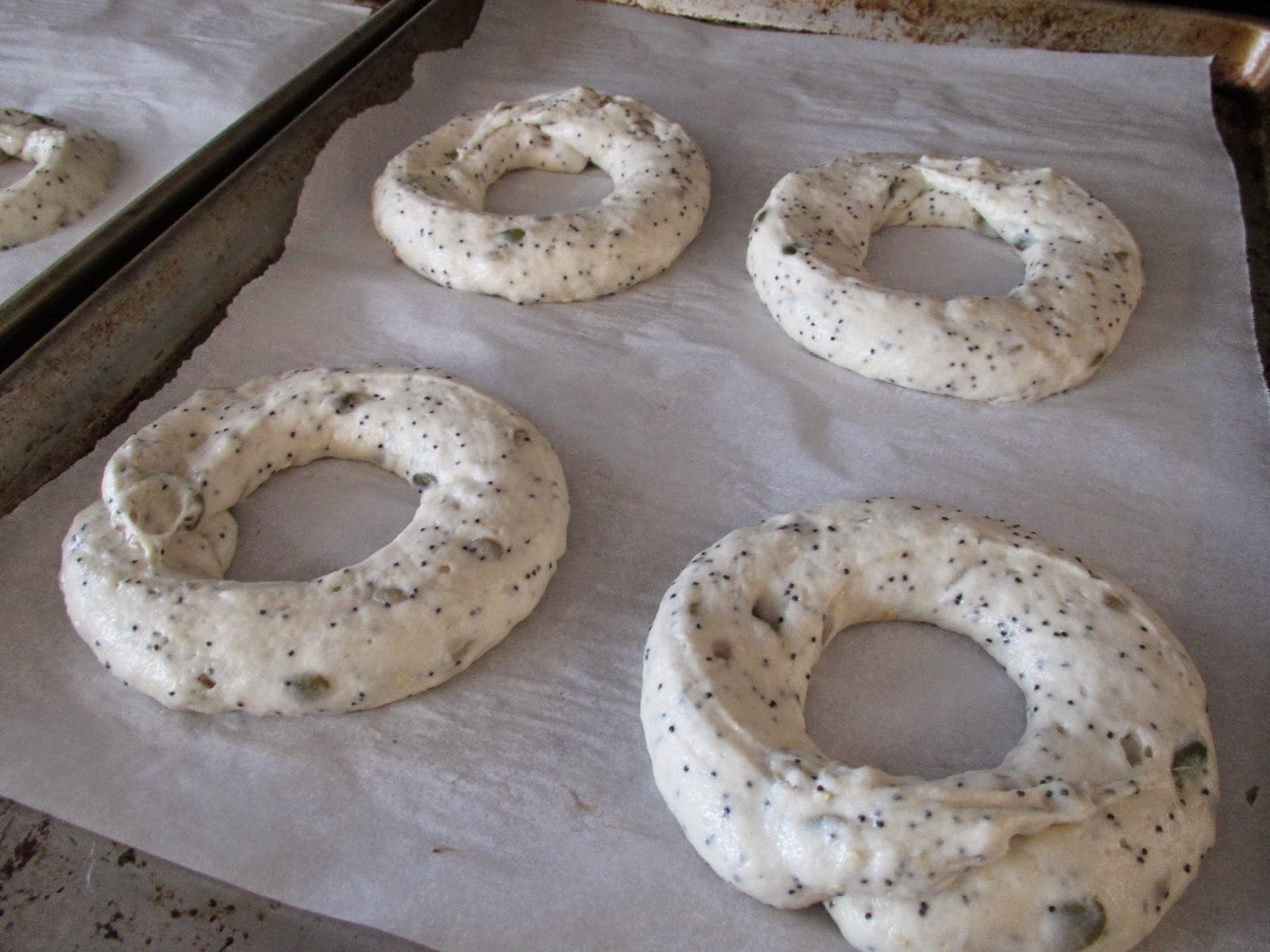 Gluten Free Bagels before rising