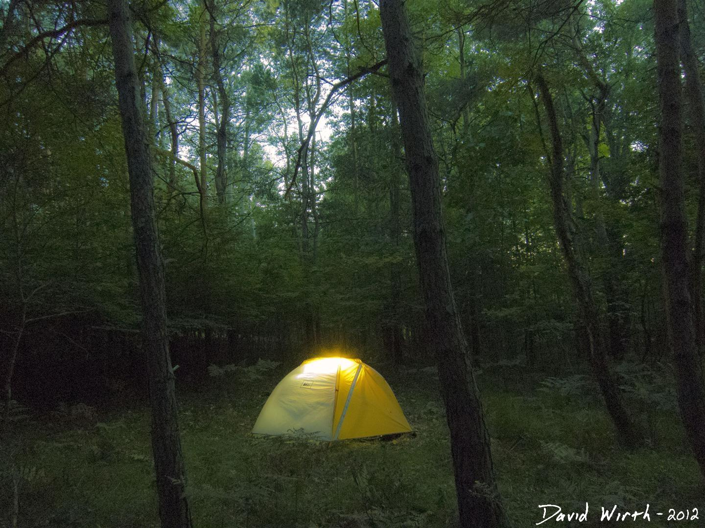 Camping and Hiking in the National Forest