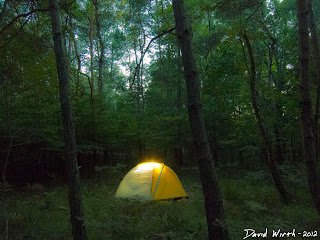 glowing tent at night, exposure, stars, forest, dark