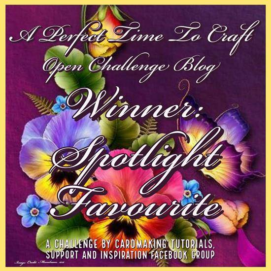 Spotlight Winner at A Perfect Time To Craft Challenge Blog
