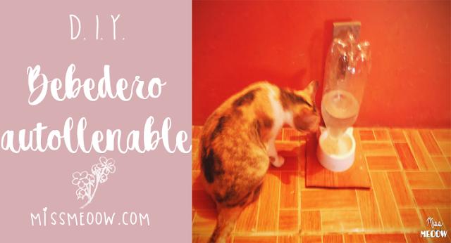 DIY: Bebedero autollenable para mascotas
