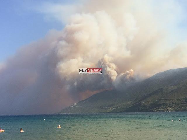 Κάηκαν σπίτια σε χωριά στην ανατολική Μάνη (βίντεο)