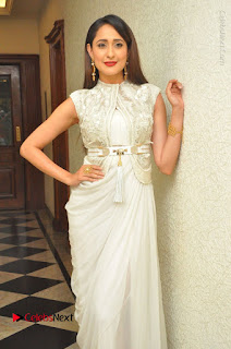 Actress Pragya Jaiswal Stills in Beautiful White Dress at turodu Audio Launch  0006.JPG