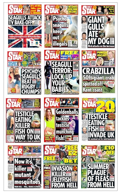 daily star seaside