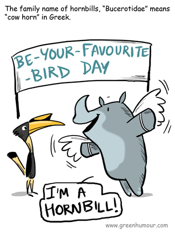 Green Humour: Some Facts about Hornbills
