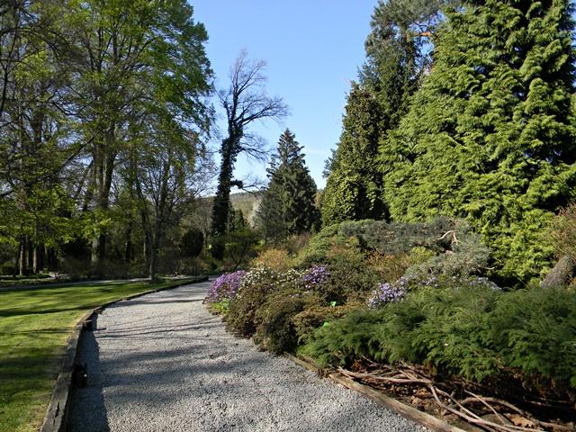 W arboretum w Wojsławicach jest dużo ścieżek dla spacerowiczów.