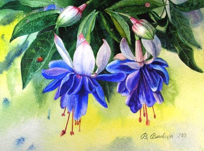 Акварельные рисунки цветов. Валентина Валевская 17