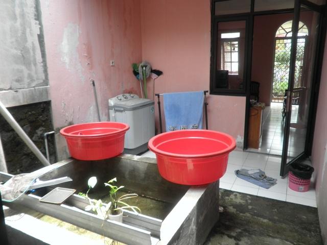 Rumah Dijual Di Taman Legian Sentul City - Harga Rumah ...