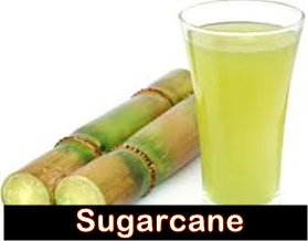 Sugarcane Benefits in Urdu