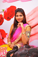Lucky Sree in dasling Pink Saree and Orange Choli DSC 0343 1600x1063.JPG