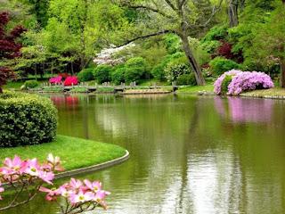 taman dan sungai indah