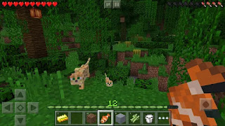 Minecraft: Pocket Edition 0.14.1 APK download