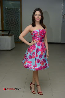 Actress Tamanna Latest Images in Floral Short Dress at Okkadochadu Movie Promotions  0142.JPG