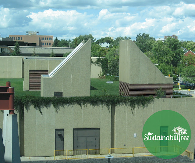 The green roof on the Colonel By building