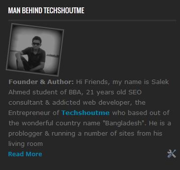 Author profile widget for blogger