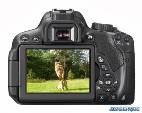 How do I import  mov file from Canon T4i/650D into Avid