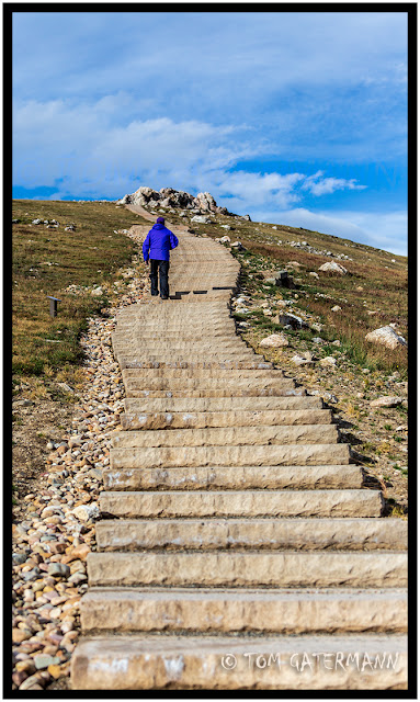 Stairs on the Alpine Trail in Rocky Mountain National Park.