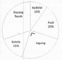 soal HOTS MTK diagram lingkaran