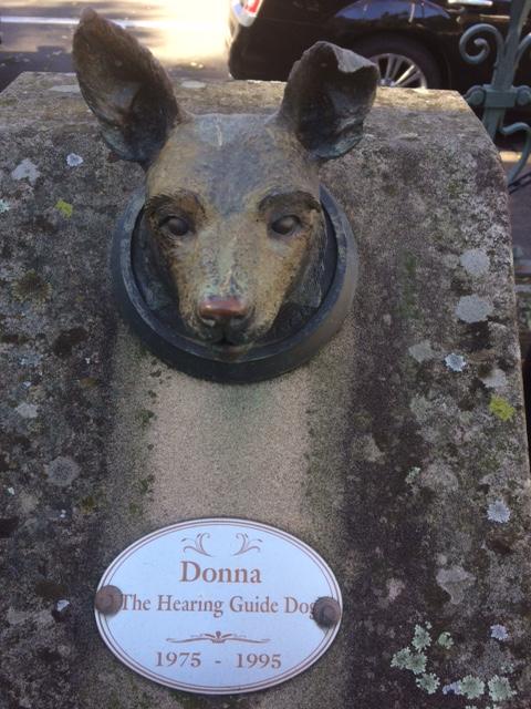 Maggie la chienne la plus vieille du monde est morte à lâge de 30