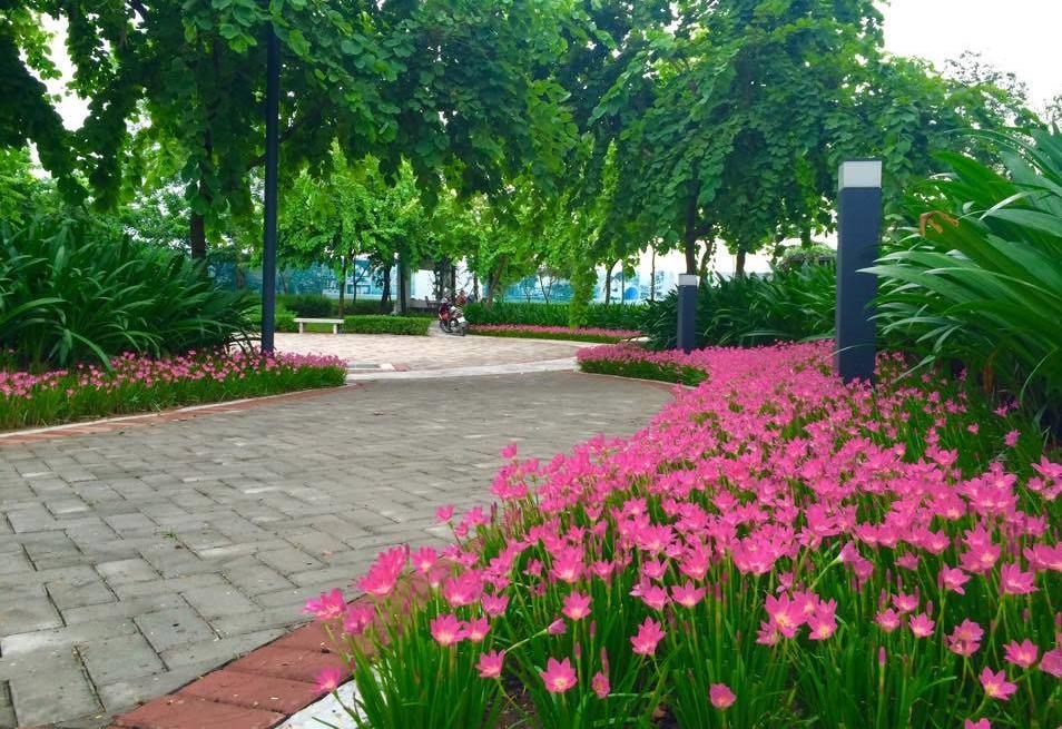 Sắc xanh trong dự án Gamuda Gardens.