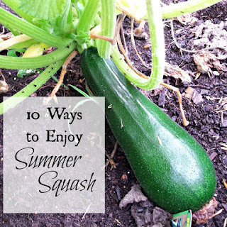 Country Fair Blog Party Blue Ribbon: Oak Hill Homestead's 10 Ways to Enjoy Summer Squash