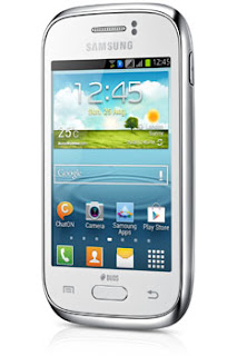 Samsung Galaxy Young DUOS (GT-S6312)
