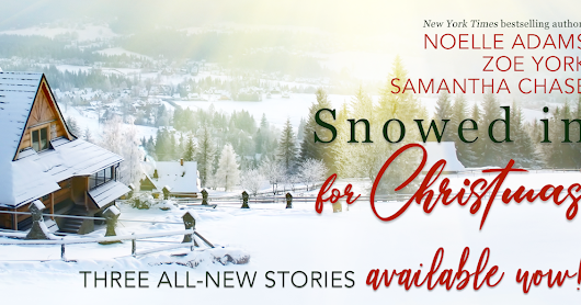 Release Day Blitz-Snowed in for Christmas!