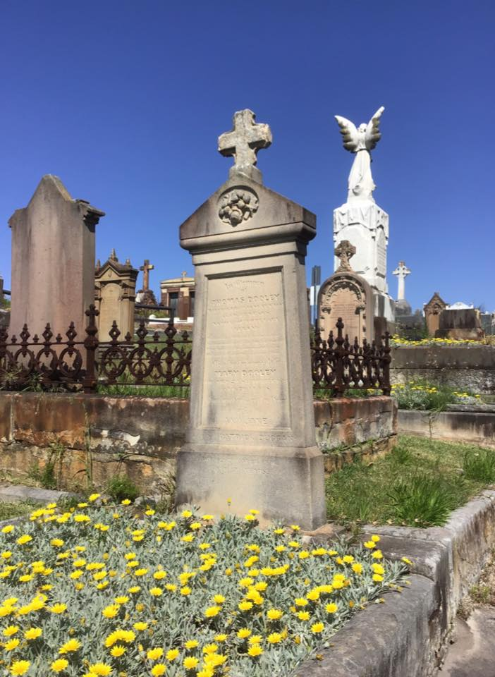 IRISH GRAVES - they who sleep in foreign lands: WAVERLEY ...