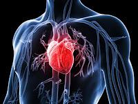Cara Mencegah Faktor Risiko Penyakit Jantung Koroner