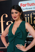 Laxmi Rai in a Deep neck Beautiful Green Gown Cute Actress Laxmi Rai ~  069.JPG