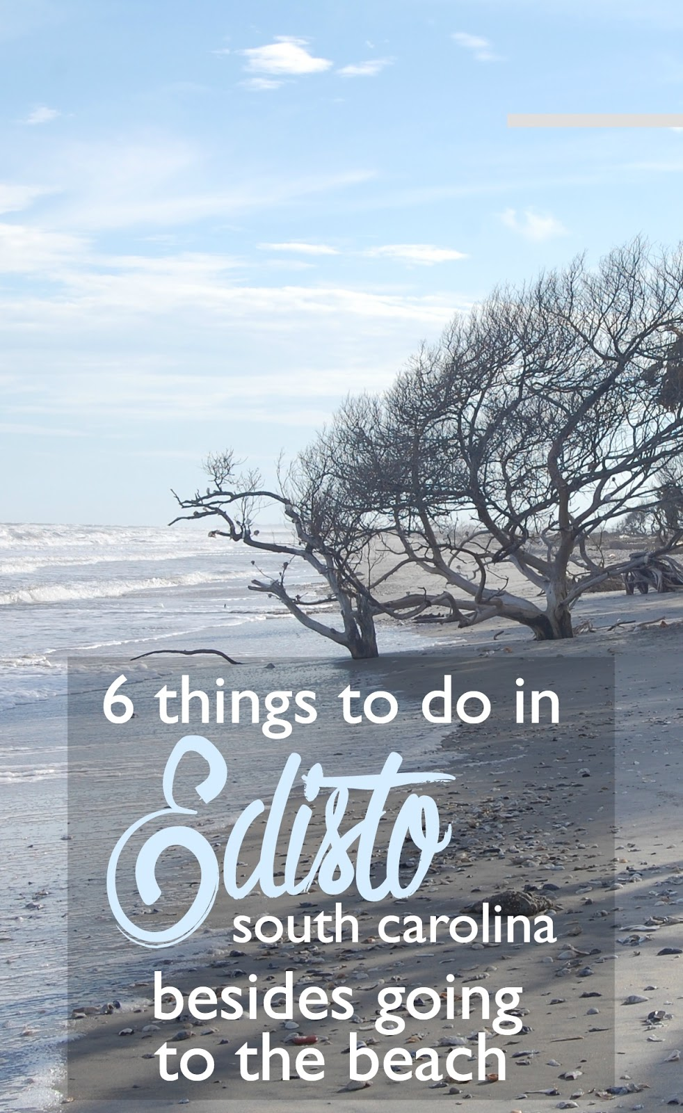 things to do in edisto island south carolina besides going to the