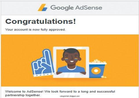 Google Adsense Akhirnya Diterima !