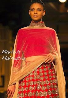 Model in Manish Malhotra , Manish malhotra Blouse, Manish malhotra Choli, Blouse deisgn by manish malhotra