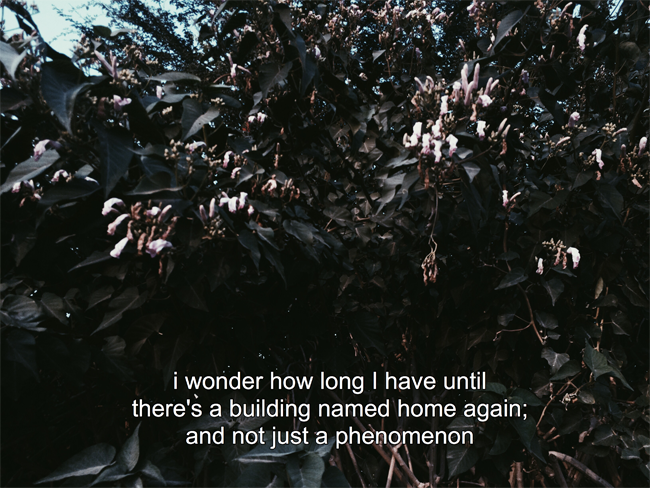 visual poetry home green tumblr aesthetics noors place blog