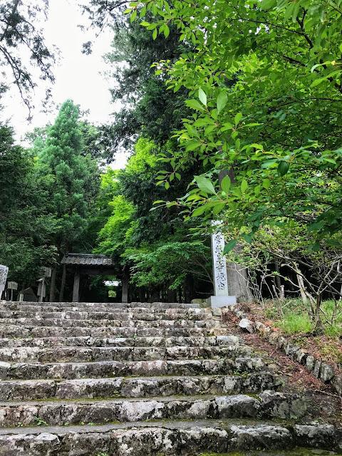 常照皇寺の画像