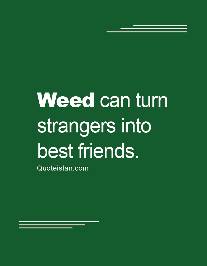 Weed can turn strangers into best friends.