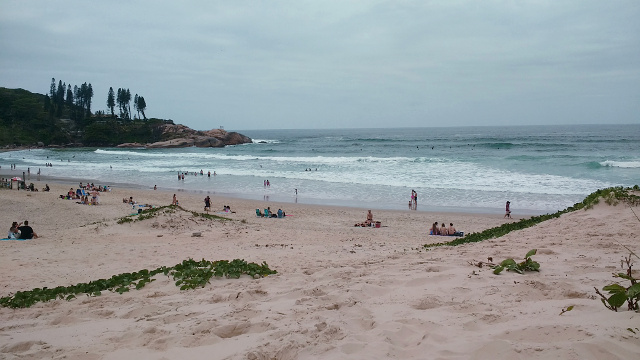 People relaxing and swimming with this great view of Praia da Joaquina.