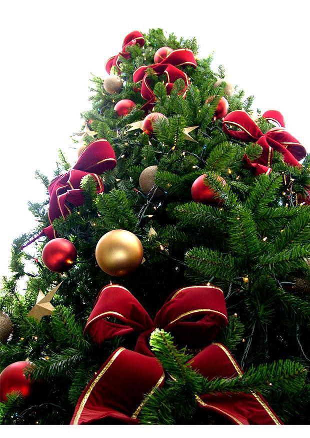 Manuales c mo decorar un rbol de navidad manuales de - Los mejores arboles de navidad ...