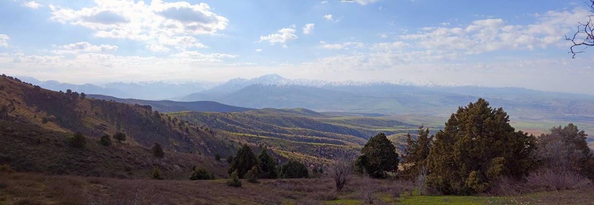 DSC02940 Panorama