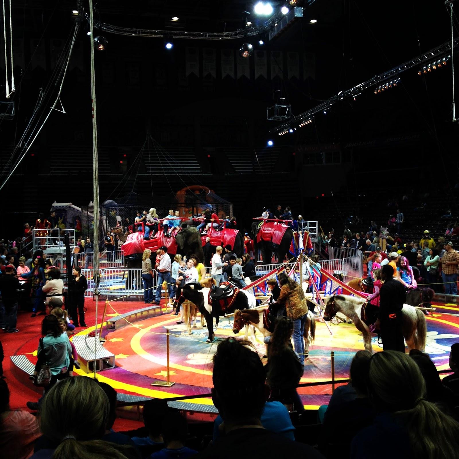 The Awkward Blogger: A Night At The Circus