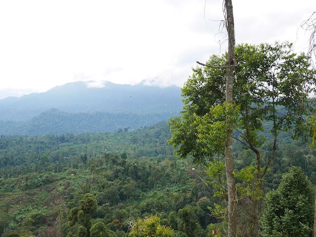 Gunung Salak Aceh
