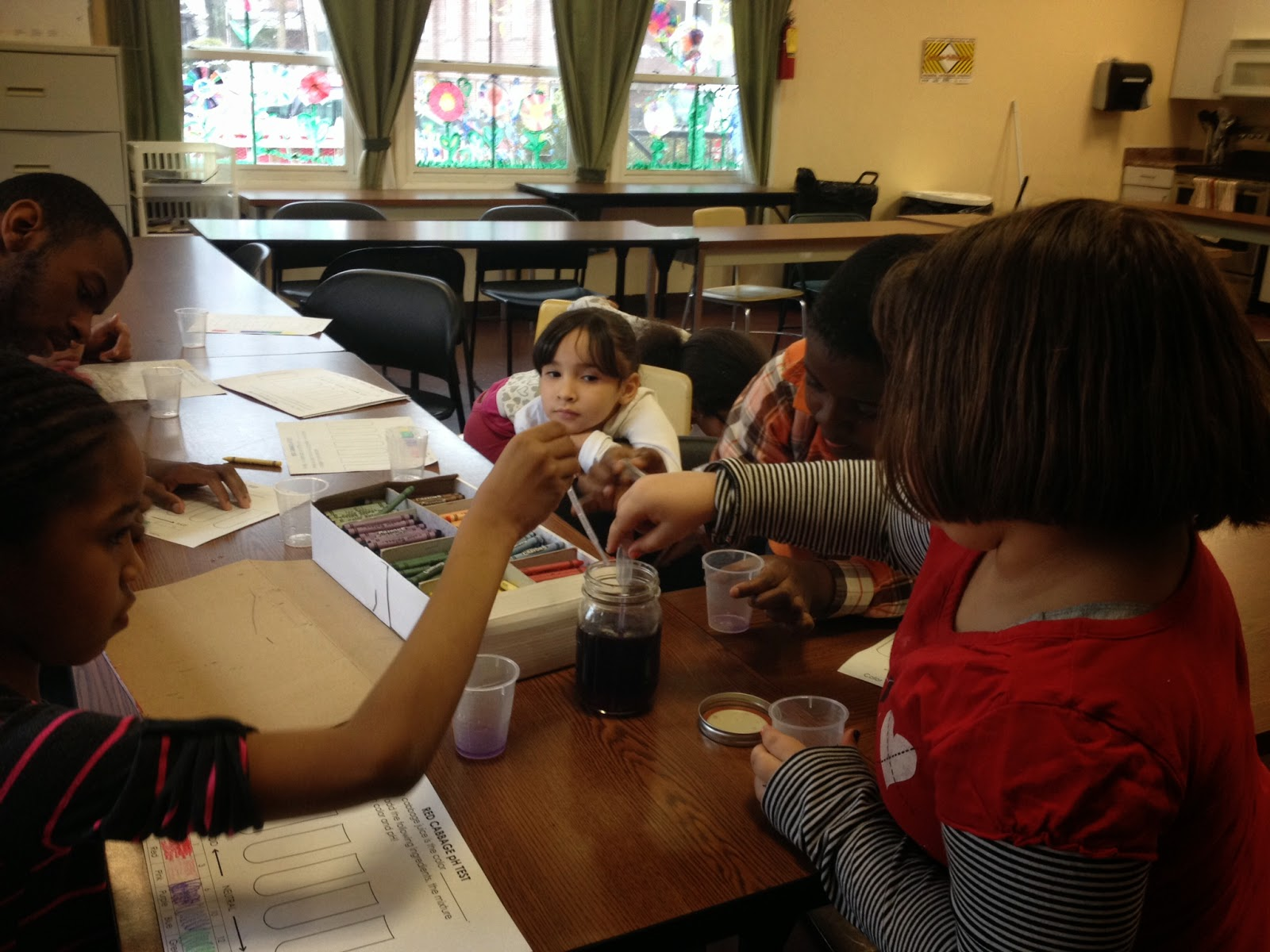 Learning By Doing Testing Ph Using Household Items