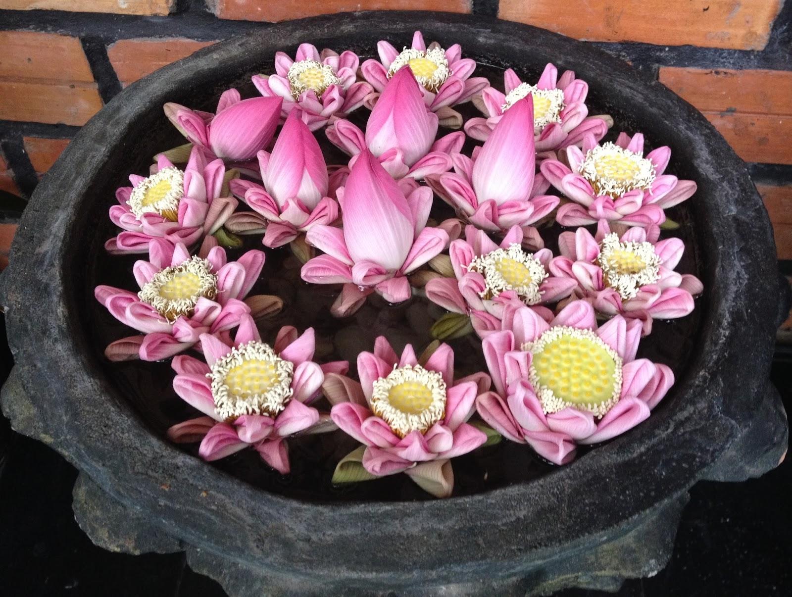 fleurs fête grand mère