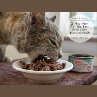 Review & Giveaway: Giving Your Cat The Best With Only Natural Pet®