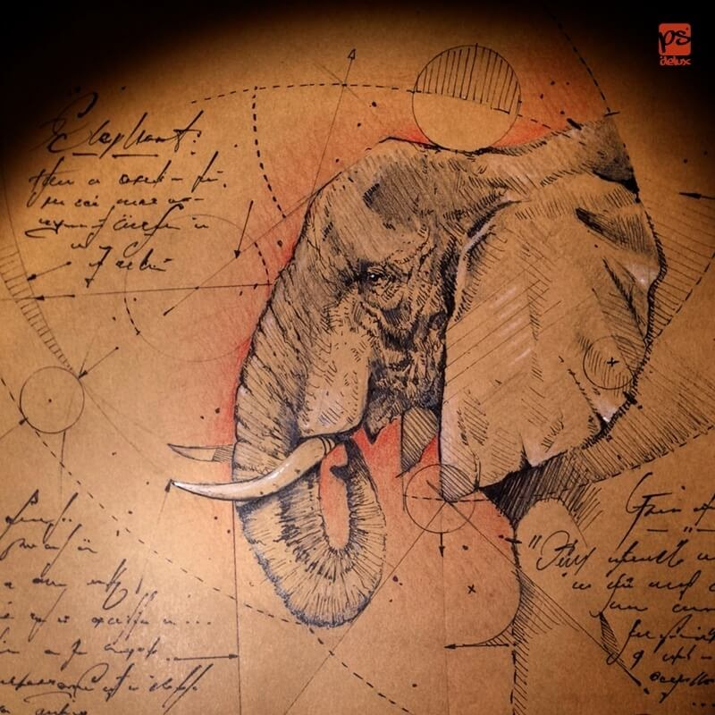 02-Elephant-psdelux-Geometric-Animal-Sketches-and-1-Alien-www-designstack-co