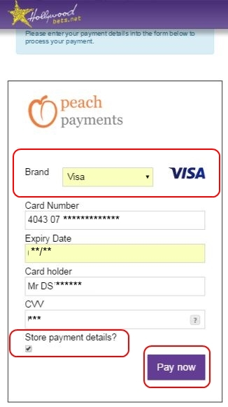 Fill in VISA Card Details and Click Store Payment Details - Peach Payments Method