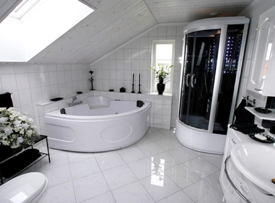 мансарда с ванной
