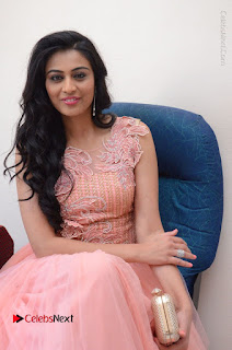Actress Neha Hinge Stills in Pink Long Dress at Srivalli Teaser Launch  0075.JPG
