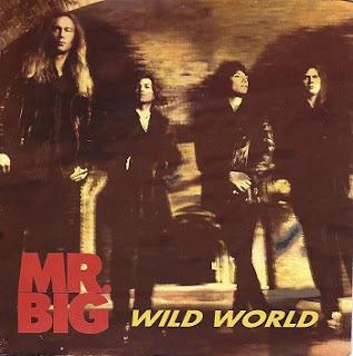 Mr. Big-Wild World